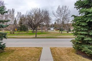 Photo 44: 377 CAPRI Avenue NW in Calgary: Brentwood Detached for sale : MLS®# C4296522