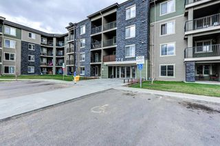 Photo 24: 420 274 MCCONACHIE Drive in Edmonton: Zone 03 Condo for sale : MLS®# E4253826
