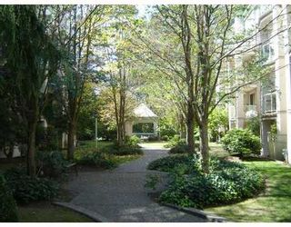 Photo 3: 213 2615 JANE Street in Burleigh Green: Central Pt Coquitlam Home for sale ()  : MLS®# V812109
