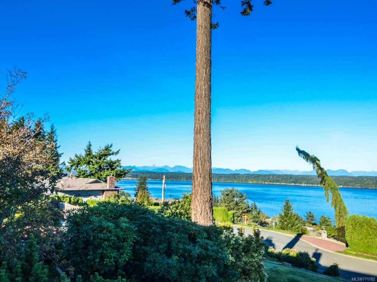 Photo 7: Photos: 451 S McLean St in CAMPBELL RIVER: CR Campbell River Central House for sale (Campbell River)  : MLS®# 771782