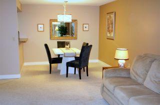 "Photo 7: 209 7175 134 Street in Surrey: West Newton Condo for sale in ""Sherwood Manor"" : MLS®# R2177408"
