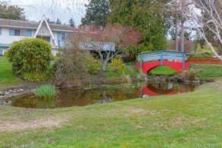 Photo 5: 5074 Cordova Bay Rd in VICTORIA: SE Cordova Bay House for sale (Saanich East)  : MLS®# 810941