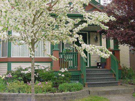 Main Photo: 8680 207 street: House for sale (Walnut Grove)  : MLS®# 2410398