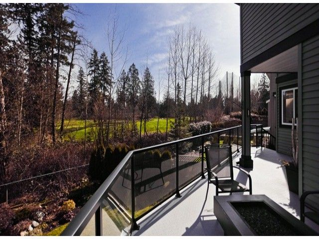 Main Photo: 21705 95 Avenue in Langley: Walnut Grove House for sale : MLS®# F1228889