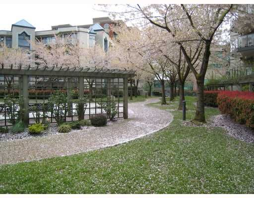 "Main Photo: 201 2968 BURLINGTON Drive in Coquitlam: North Coquitlam Condo for sale in ""THE BURLINGTON"" : MLS®# V729358"