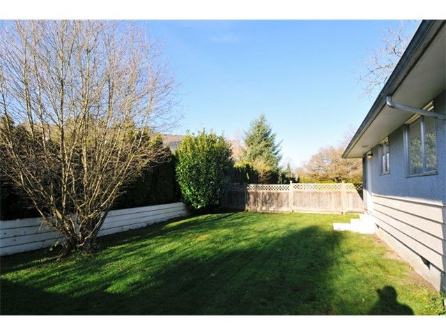 Photo 3: Photos: A & B 21303 RIVER Road in Maple Ridge: West Central House for sale : MLS®# V1036804