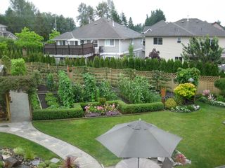 Photo 41: 27982 Buffer Crescent in Abbotsford: House for sale