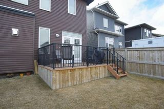 Photo 45: 419 Evansglen Drive NW in Calgary: Evanston Detached for sale : MLS®# A1095039