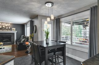 Photo 14: 47 Chapala Landing SE in Calgary: Chaparral Detached for sale : MLS®# A1124054