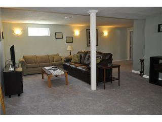 Photo 11: 48 SPRING HAVEN Road SE: Airdrie Residential Detached Single Family for sale : MLS®# C3607940