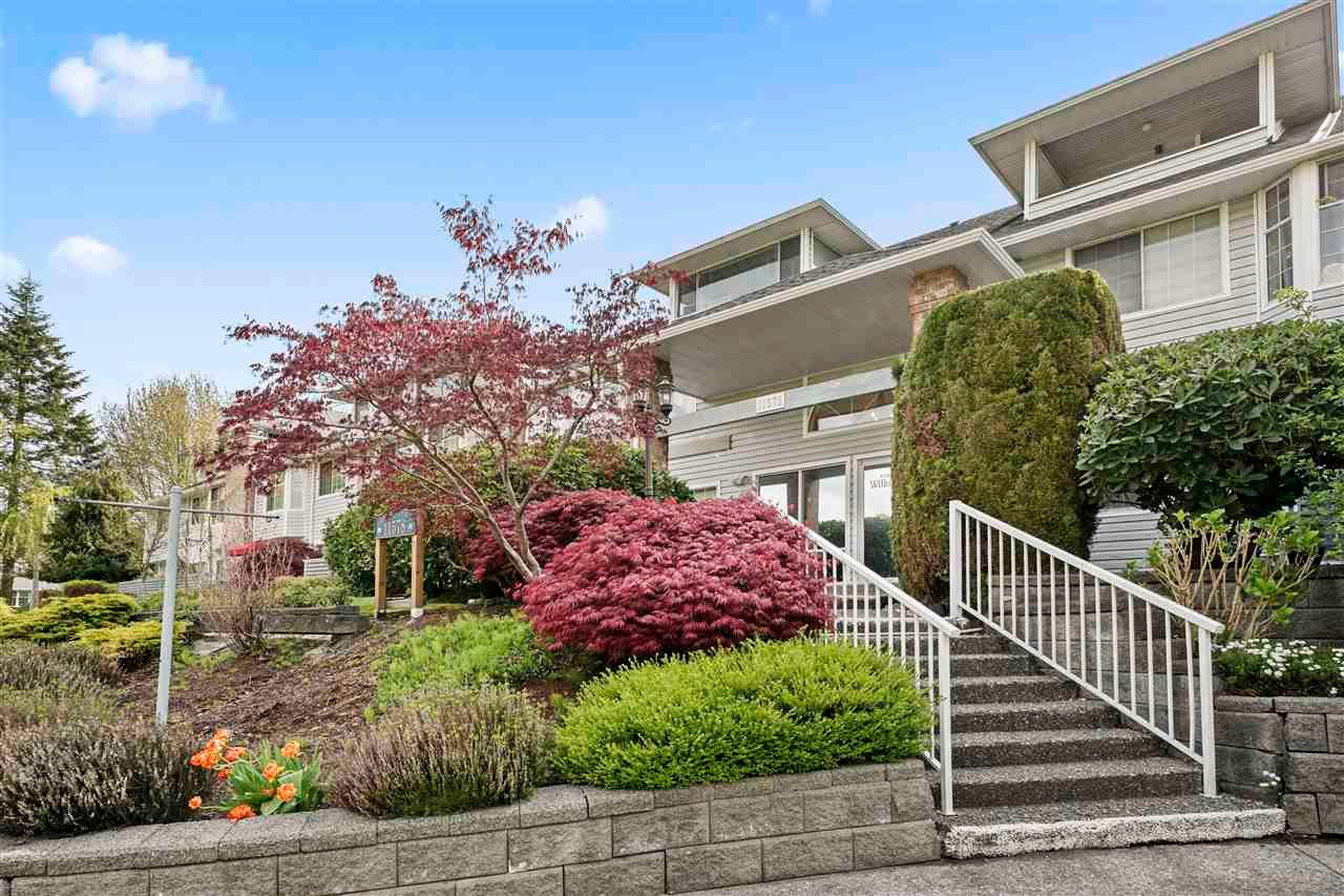 "Main Photo: 108 11578 225 Street in Maple Ridge: East Central Condo for sale in ""The Willows"" : MLS®# R2573953"
