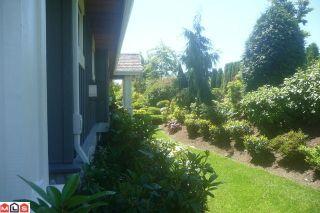 Photo 9: # 48 15715 34TH AV in Surrey: House for sale : MLS®# F1100169