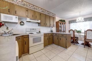Photo 12: 13324 63 Street in Edmonton: Zone 02 House for sale : MLS®# E4256894