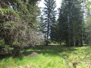 Photo 5: 127, 5241 TWP Rd 325A: Rural Mountain View County Land for sale : MLS®# C4299936