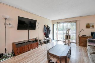 Photo 6: 118 585 S Dogwood St in Campbell River: CR Campbell River Central Condo for sale : MLS®# 879212