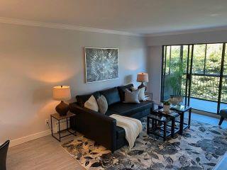 "Photo 9: 305 1360 MARTIN Street: White Rock Condo for sale in ""The Windward"" (South Surrey White Rock)  : MLS®# R2603372"
