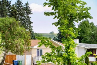 Photo 43: 3231 52 Avenue NW in Calgary: Brentwood Detached for sale : MLS®# A1128463
