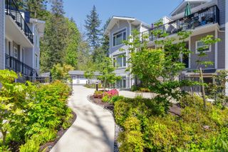 Photo 30: 300 591 Latoria Rd in : Co Olympic View Condo for sale (Colwood)  : MLS®# 875313