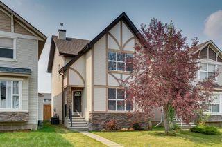Photo 39: 252 Silverado Range Close SW in Calgary: Silverado Detached for sale : MLS®# A1125345