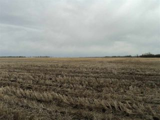 Photo 2: RR 25 HWY 661: Rural Westlock County Rural Land/Vacant Lot for sale : MLS®# E4236665