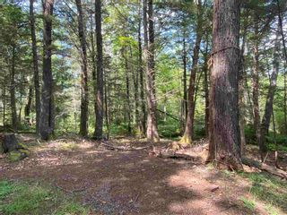 Photo 25: 665 South Range Cross Road in South Range: 401-Digby County Residential for sale (Annapolis Valley)  : MLS®# 202123570