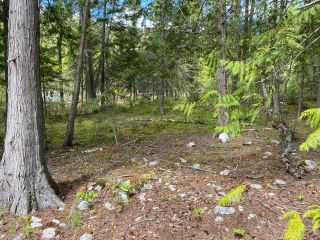 Photo 4: LOT 2 HIGHWAY 3A in Nelson: Vacant Land for sale : MLS®# 2455415