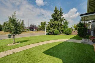 Photo 30: 204 GEORGIAN Way: Sherwood Park House for sale : MLS®# E4257975