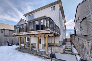 Photo 49: 900 Copperfield Boulevard SE in Calgary: Copperfield Detached for sale : MLS®# A1079249
