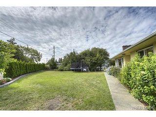 Photo 10: 312 Brunswick Pl in VICTORIA: SW Tillicum House for sale (Saanich West)  : MLS®# 736550