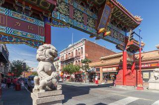 Photo 42: 111 456 Pandora Ave in : Vi Downtown Condo for sale (Victoria)  : MLS®# 882943