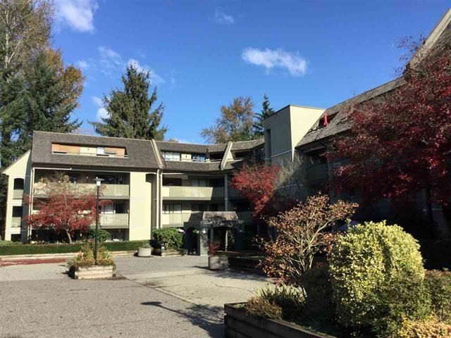 Main Photo: 308 1210 PACIFIC Street in Coquitlam: North Coquitlam Condo for sale : MLS®# R2603038