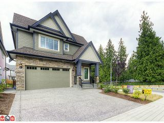 """Photo 1: 21181 77A Avenue in Langley: Willoughby Heights House for sale in """"YORKSON CREEK"""" : MLS®# F1219250"""