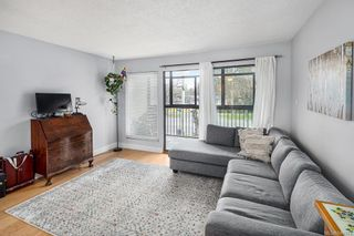 Photo 10: 308 505 Cook St in Victoria: Vi Fairfield West Condo for sale : MLS®# 844974