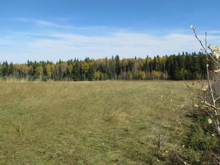 Photo 23: TWP Rd 310: Rural Mountain View County Land for sale : MLS®# C4292828