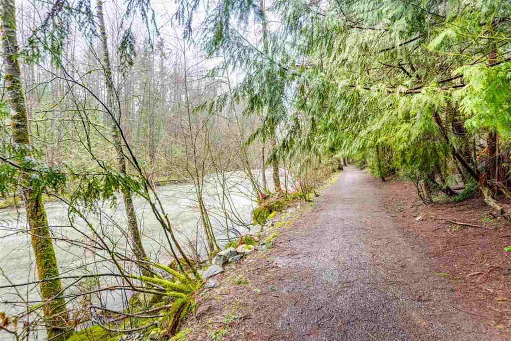 Main Photo: 1285 RIVER Drive in Coquitlam: River Springs House for sale : MLS®# R2160017