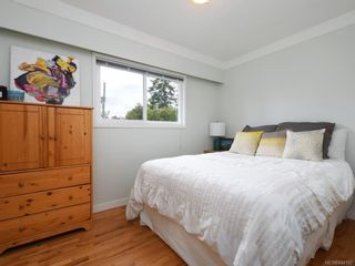 Photo 11: 679 Vanalman Ave in Saanich: SW Northridge House for sale (Saanich West)  : MLS®# 844157