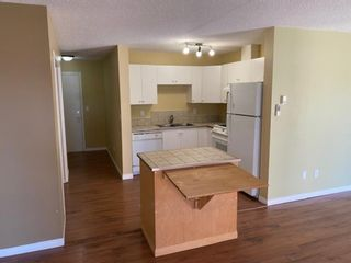 Photo 4: 1119 6224 17 Avenue SE in Calgary: Red Carpet Apartment for sale : MLS®# A1146122