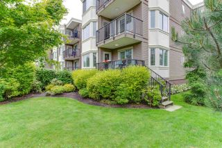 "Photo 17: 203 15357 ROPER Avenue: White Rock Condo for sale in ""REGENCY COURT"" (South Surrey White Rock)  : MLS®# R2181249"