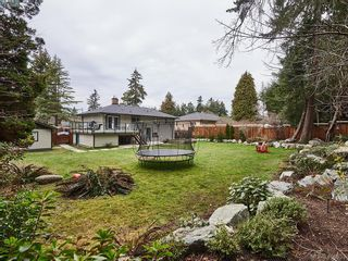 Photo 28: 4025 Haro Rd in VICTORIA: SE Arbutus House for sale (Saanich East)  : MLS®# 807937