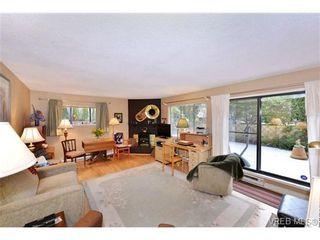 Photo 7: 101 1031 Burdett Ave in VICTORIA: Vi Downtown Condo for sale (Victoria)  : MLS®# 723639
