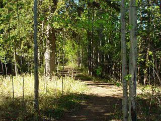 Photo 7: 41 Heron Point Cl: Rural Wetaskiwin County Rural Land/Vacant Lot for sale : MLS®# E4233949