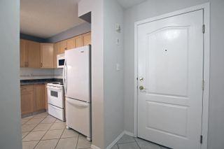 Photo 38: 104 8909 100 Street in Edmonton: Zone 15 Condo for sale : MLS®# E4262789