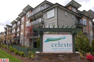Photo 1: # 105 8183 121A ST in Surrey: Queen Mary Park Surrey Condo for sale : MLS®# F1021808