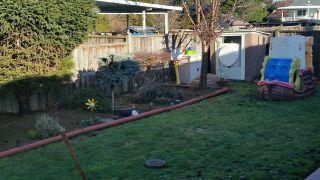 Photo 14: 14165 109 AVENUE in Surrey: Bolivar Heights 1/2 Duplex for sale (North Surrey)  : MLS®# R2032562