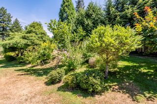 Photo 42: 810 Back Rd in : CV Courtenay East House for sale (Comox Valley)  : MLS®# 883531