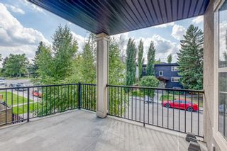 Photo 21: 301 3704 15A Street SW in Calgary: Altadore Apartment for sale : MLS®# A1066523