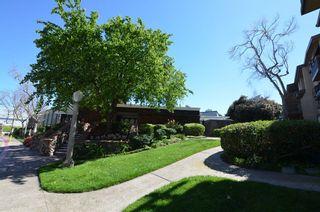 Photo 24: LA JOLLA Condo for sale : 2 bedrooms : 8850 Villa La Jolla Dr #307 in San Diego