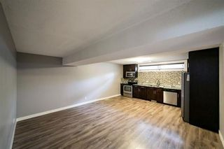 Photo 24: 12412 51 Avenue in Edmonton: Zone 15 House for sale : MLS®# E4243424