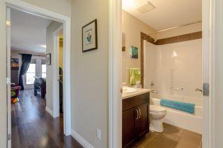 Photo 28: 8553 88 Street in Edmonton: Zone 18 House Half Duplex for sale : MLS®# E4229581