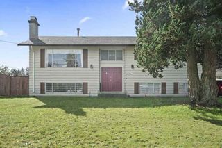 Photo 2: 21744 DONOVAN AVENUE in Maple Ridge: West Central Home for sale ()  : MLS®# R2416369